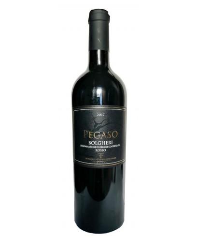 Italian red wine Pegaso Bolgheri
