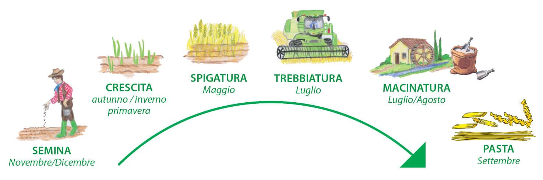 cycle-life-pasta-bertoli.jpg