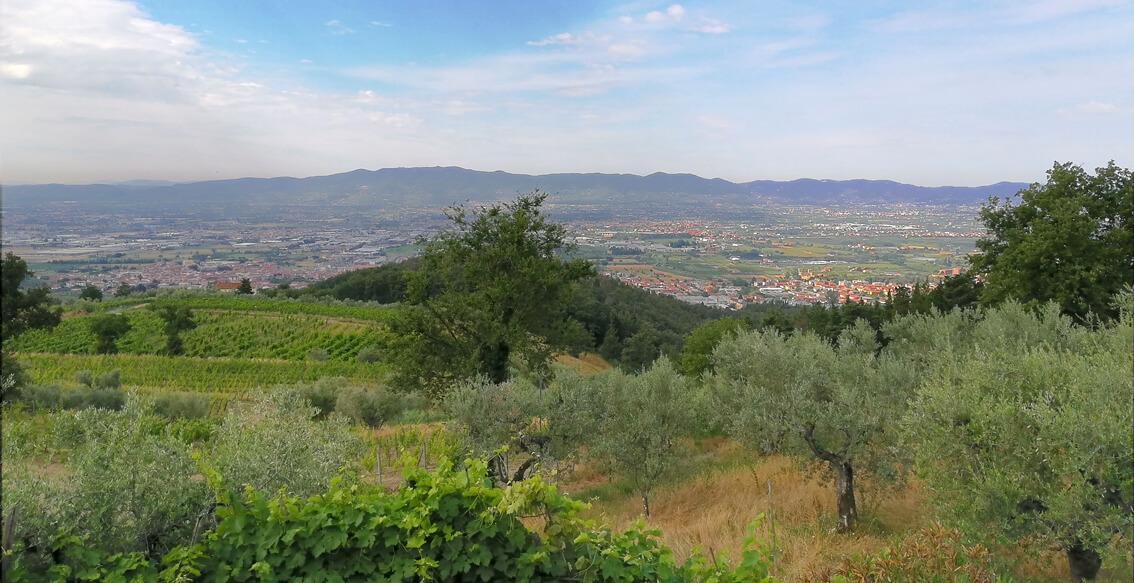 panorama Il Poggiolino di Montemurlo