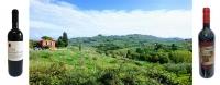 Barco Reale di Carmignano Tuscan Red Wine
